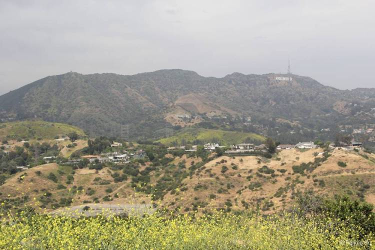 Смотровая площадка Голливуд Боул в Лос-Анджелесе 20