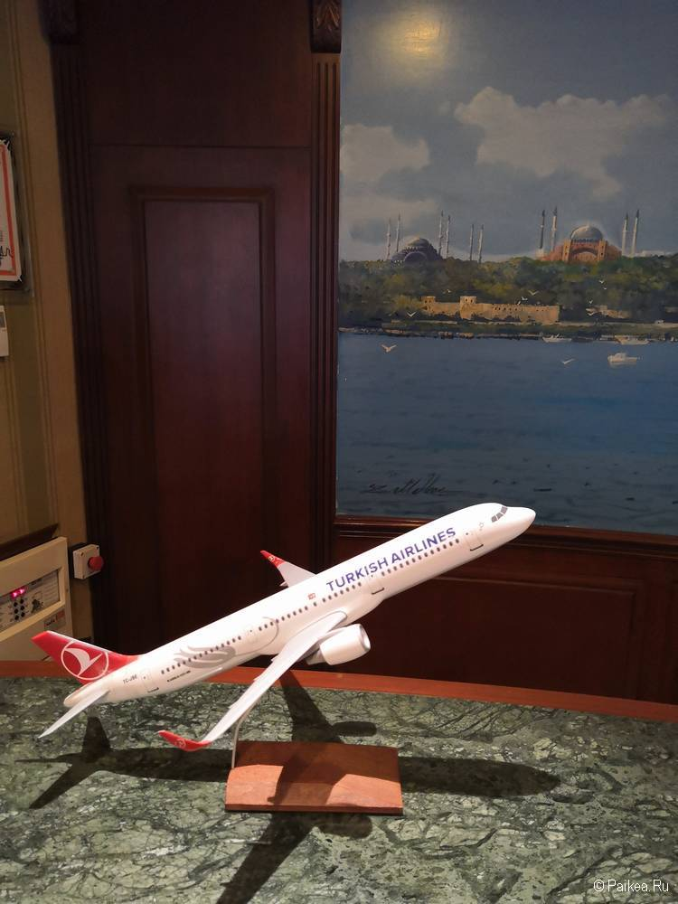 Пересадка в Стамбуле Турецкие авиалинии бесплатный отель