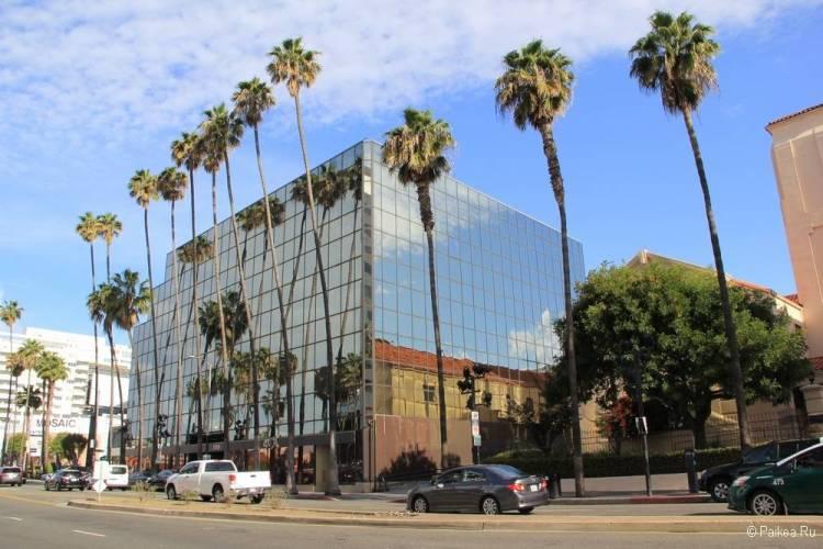 Поездка в Лос-Анджелес самостоятельно город с пальмами