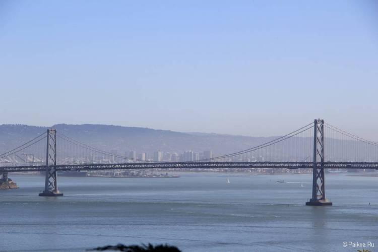 Башня Койт, Сан-Франциско 49