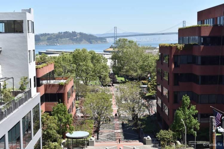 Улица со ступеньками Гринвич-Степс в Сан-Франциско 03