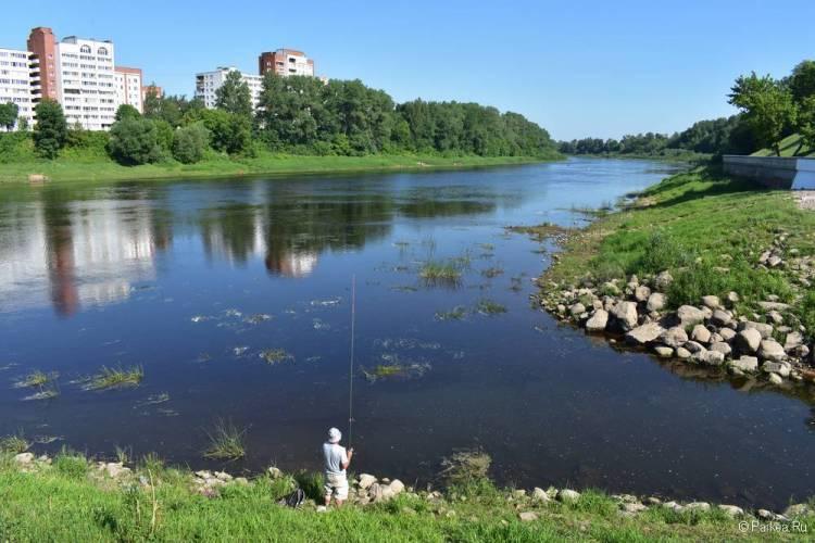 Слияние двух рек в Витебске