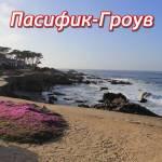 пасифик гроув (pacific grove)
