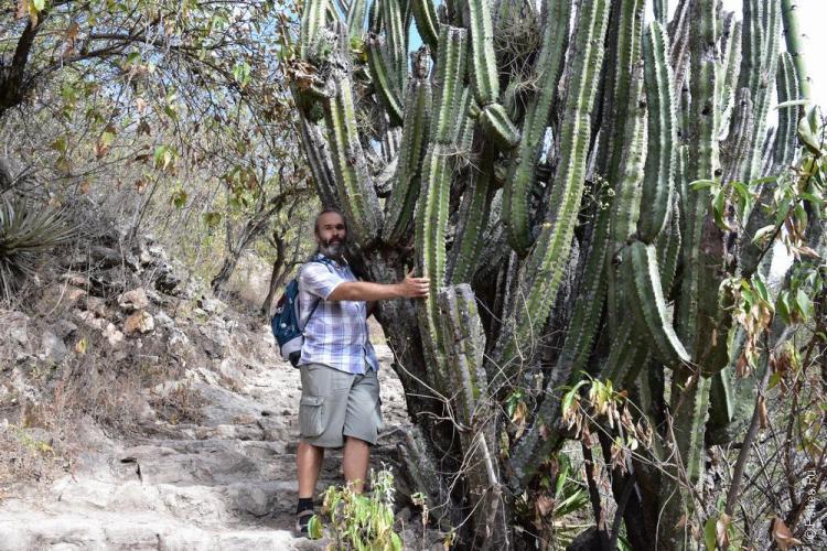 путешествие в мексику самостоятельно йерве эль агуа 43