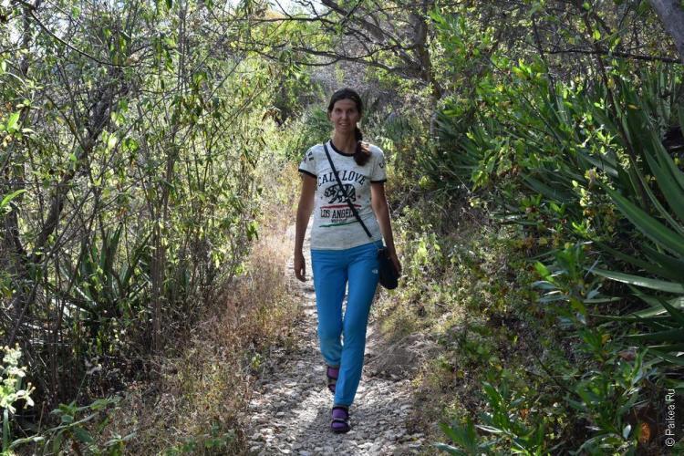 путешествие в мексику самостоятельно йерве эль агуа 50
