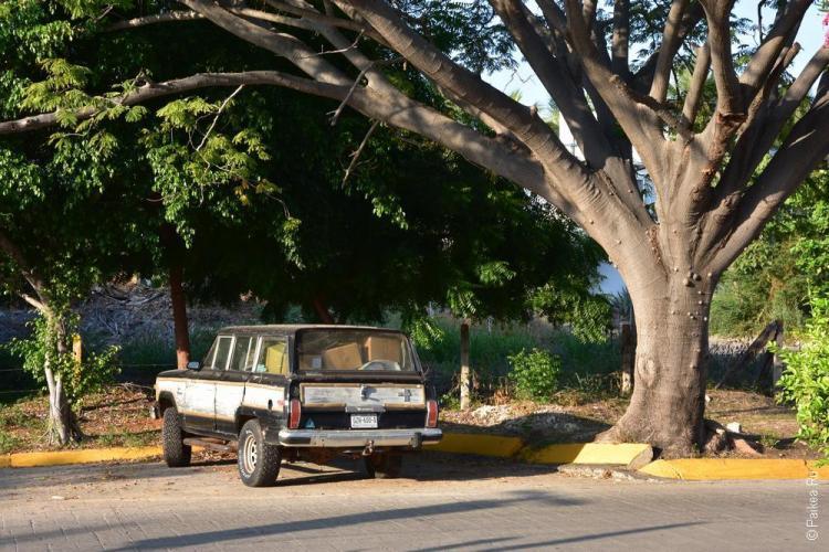 путешествие в мексику самостоятельно пуэрто эскондидо 32