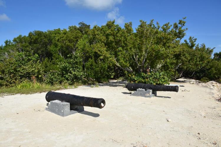 парк джон пеннекамп корал риф / john pennekamp coral reef state park 54