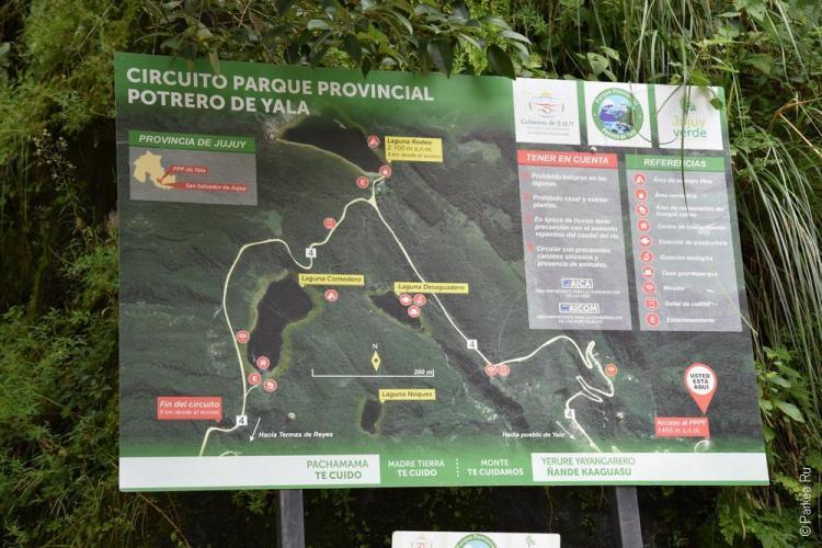 национальный парк потеро де яла, аргентина / parque nacional potrero de yala 11