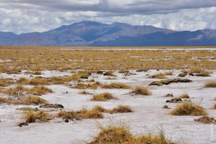 салинас грандес, аргентина / salinas grandes 28