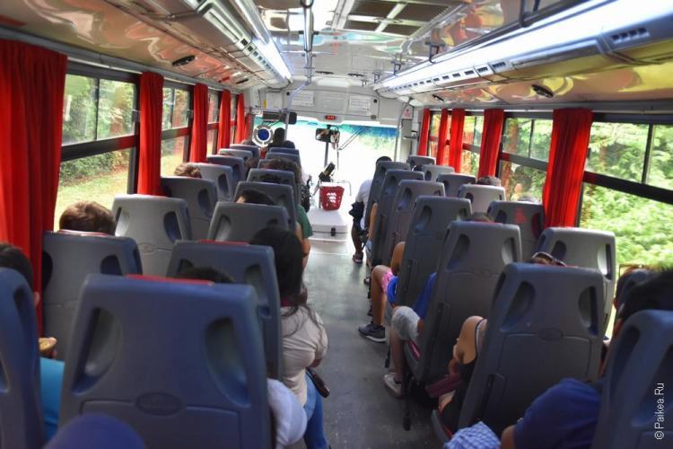 игуасу автобус