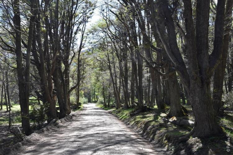 тьерра дель фуэго парк / огненная земля 09