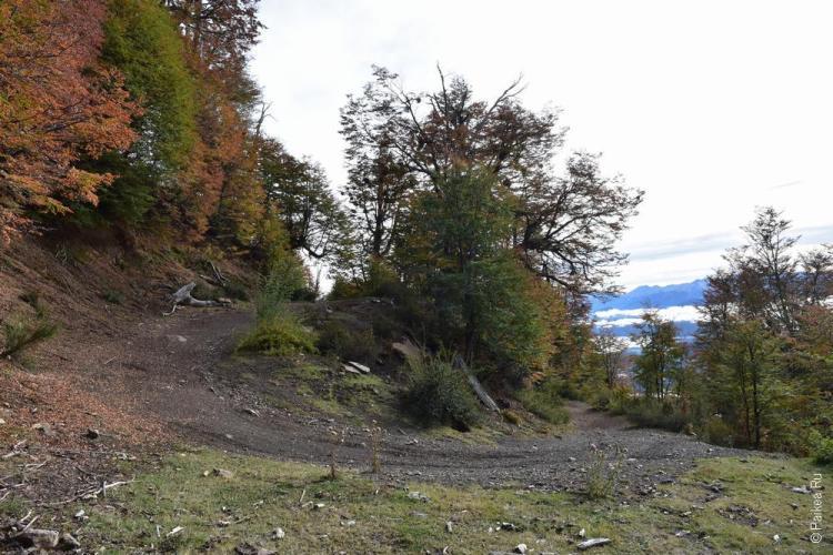 барилоче дорога в горы