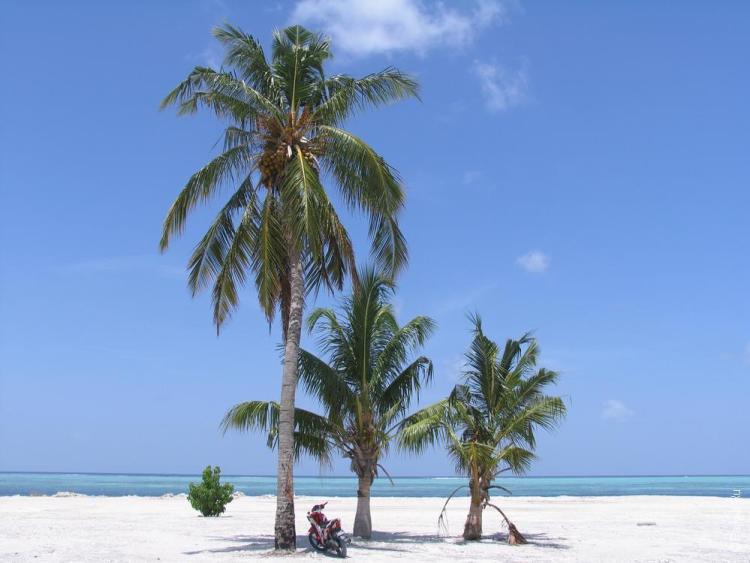 мальдивы недорогой остров или резорт 13