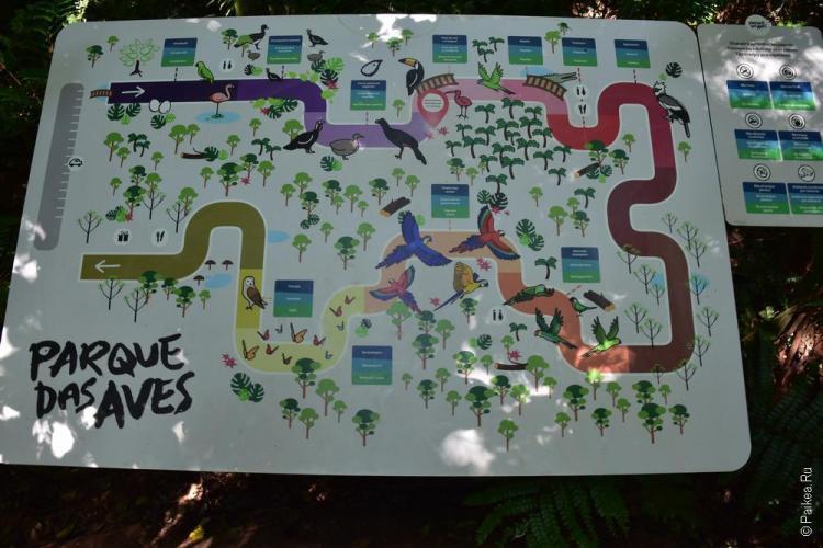 парк птиц бразилия (parque das aves) 10