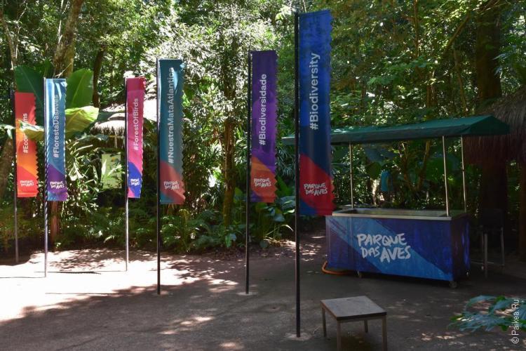 парк птиц бразилия (parque das aves) 14