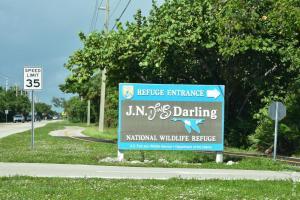 заповедник динг дарлинг на острове санибел, флорида, сша / ding darling national wildlife refuge 36