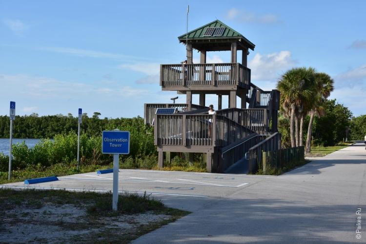заповедник динг дарлинг на острове санибел, флорида, сша / ding darling national wildlife refuge 72