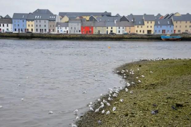 irlanda 10