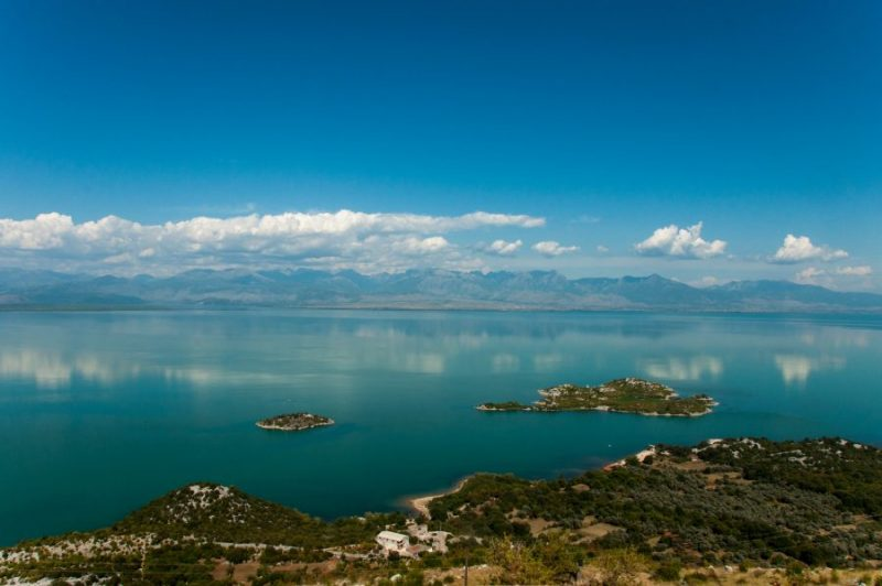organizzare un viaggio nei Balcani Montenegro Skadar