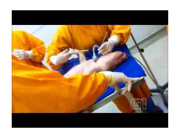 Ativistas interrompem aula prática de medicina na PUC que usava porcos