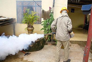 Semusa lançará Plano Estratégico para a contenção da dengue na segunda-feira