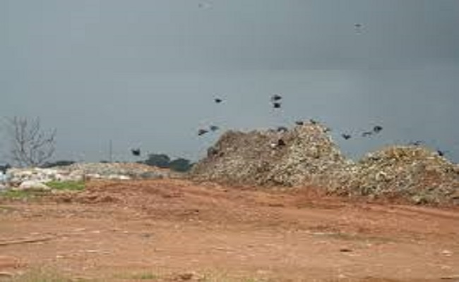 Metade das cidades brasileiras não está preparada para acabar com lixões