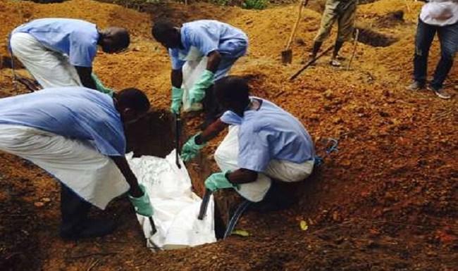 Ebola já matou mais de 8,1 mil pessoas na África Ocidental