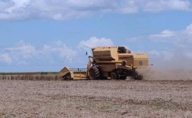 Contribuição do agronegócio para a balança comercial deve cair 3%, prevê setor