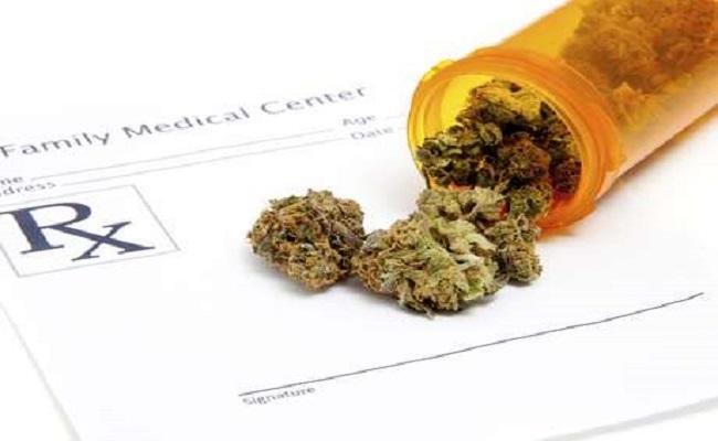 Anvisa deve liberar substância extraída da maconha para uso medicinal