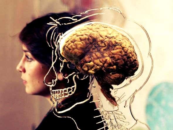 Veja dicas da neurociência para melhorar a sua concentração