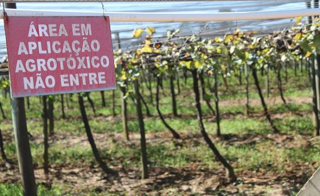 Efeito de agrotóxicos na saúde volta a mobilizar Anvisa e MPF