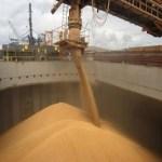 Estudo vai verificar potencial de crescimento das exportações agrícolas