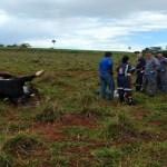 Fazendeiro leva choque e morre ao tentar tirar foto de gado eletrocutado