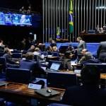 Senado aprova PEC para garantir realização de vaquejadas