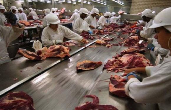 Carne fraca: JBS e BRF perdem bilhões em um único dia