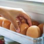Lasanha de cavalo, ovo falso e outros casos de fraude alimentícia