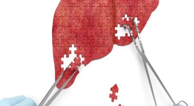 9 fatores que danificam a saúde do fígado