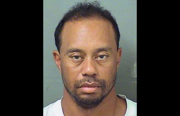 Tiger Woods, um dos maiores golfistas do mundo, é preso por dirigir embriagado