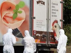'Se morrerem, largue-os na floresta': a história dos 71 imigrantes asfixiados em caminhão na Hungria