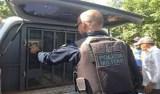 Mulher é presa após ameaçar funcionária pública em Porto Velho