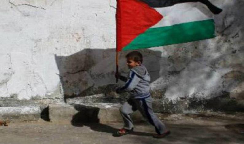 Israel e palestinos falham em processar crimes de guerra, diz ONU