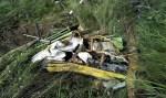 Ônibus cai em penhasco e mata 28 pessoas no norte da Índia