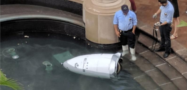 Robô policial' é achado 'afogado' em fonte d'água nos EUA