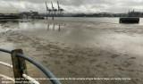 Entenda o que é o recuo do mar que atingiu as praias do Brasil