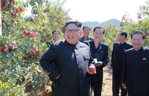 Coréia do Sul aprova ajuda de US$ 8 milhões à Coreia do Norte