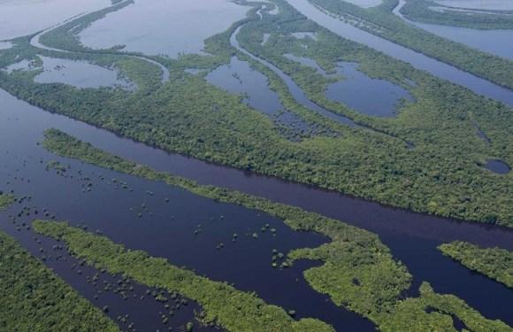 Aeronave do Greenpeace cai na região de Anavilhanas, no AM; uma pessoa morreu
