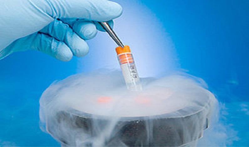 Bebê nascido por fertilização in vitro juridicamente não tem pai