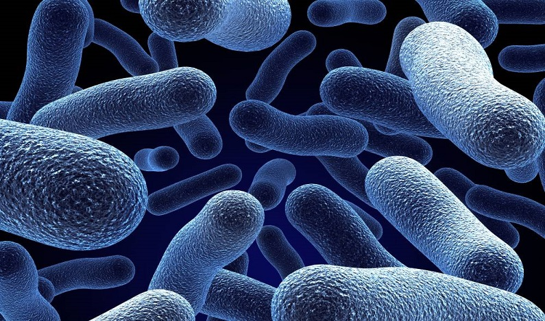 Mulher contrai grave infecção bacteriana durante viagem de avião