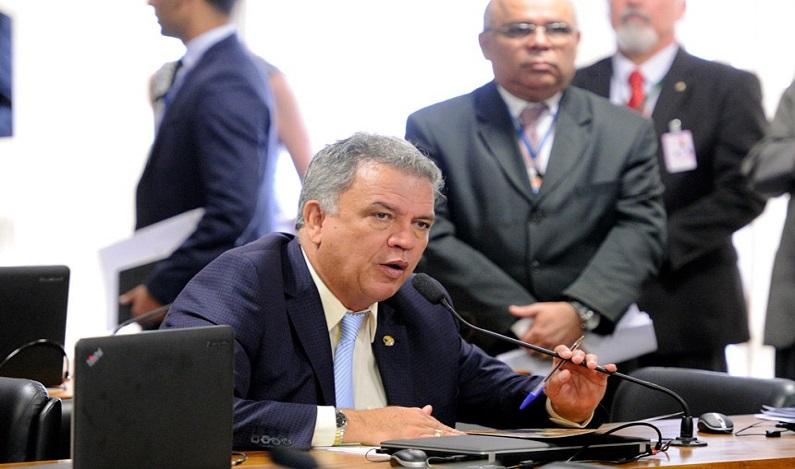 Senador lê relatório favorável à convocação de plebiscito sobre revogação do Estatuto do Desarmamento