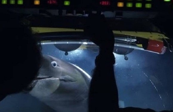 Tubarões atacam equipe da BBC em submarino durante gravação de documentário